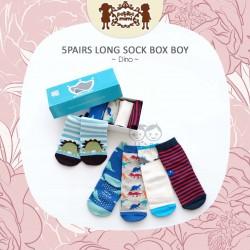 Petite Mimi - 5Pairs Long Sock Box Boy- Dino